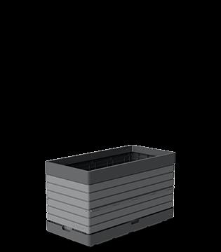 gris_1B